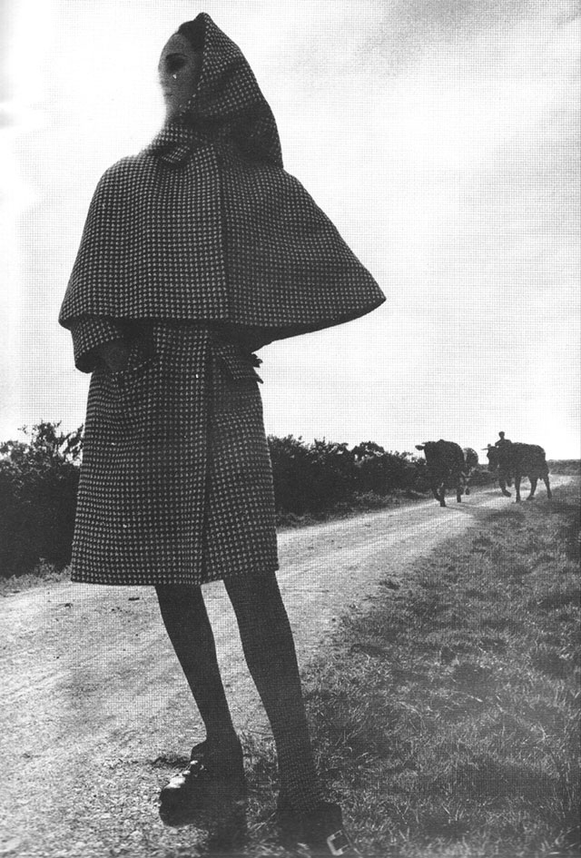 Harpers Bazaar August 1965 cows
