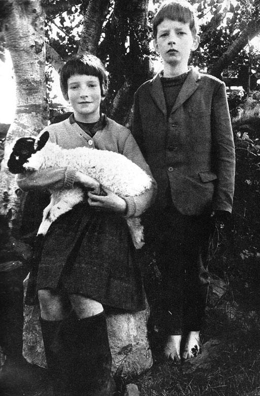 lamb_kids